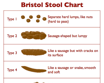 Here is What Your Stool Is Saying About Health